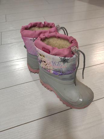 Śniegowce Muflon