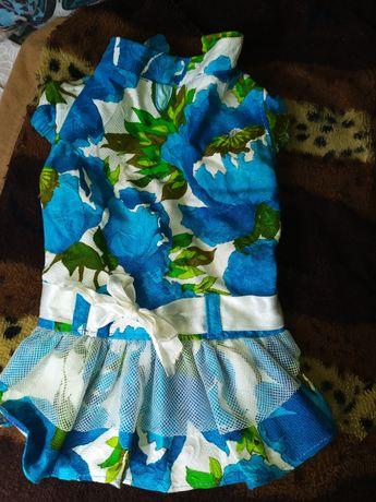 Платье для маленькой собачки