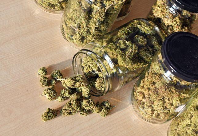CBD legal Marihuana