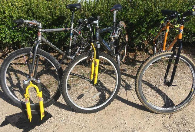 Coleção bicicletas Kona