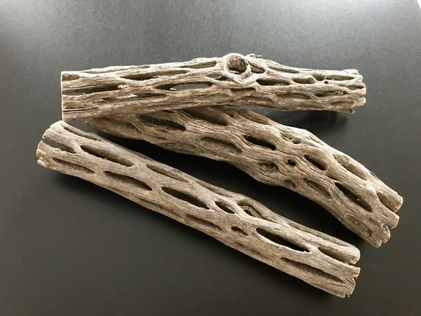 Cholla Wood 15cm/7.5cm