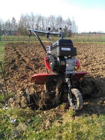 Usługi ogrodnicze glebogryzarka,trawniki,przycinanie,formowanie roślin