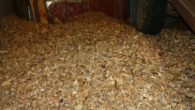 Zrębka sucha zrębki opał drewno opałowe na podściółkę zakwaszające