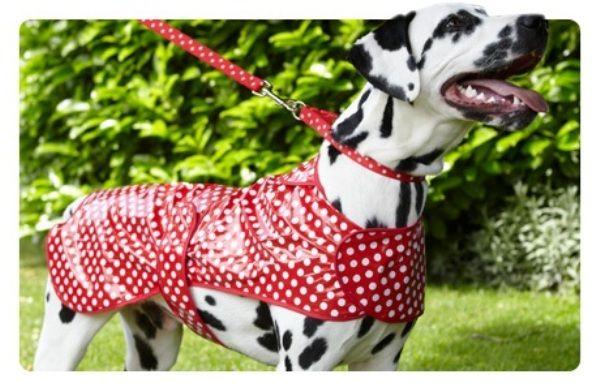 Śliczny płaszczyk przeciwdeszczowe dla psa POLKA DOTS