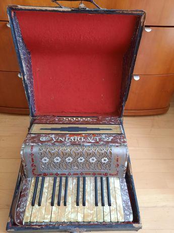 Akordeon La Divina z walizką