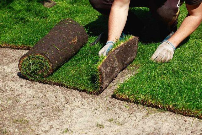 Рулонный и Посевной газон от Производителя Комплексное благоустройство
