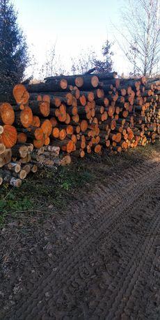 Drewno opałowe  olsza olszyna