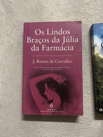Livros - Os lindos braços da Júlia da farmácia  A profecia clandestina
