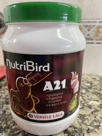 Comida para pássaros bebés