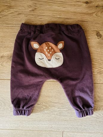 Newbie spodnie dresowe
