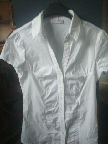Koszula damska z krótkim rękawem rozmiar S Orsay