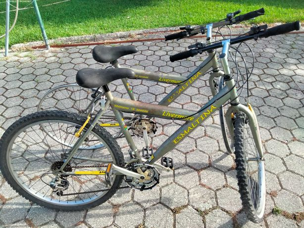 Bicicletas gêmeas