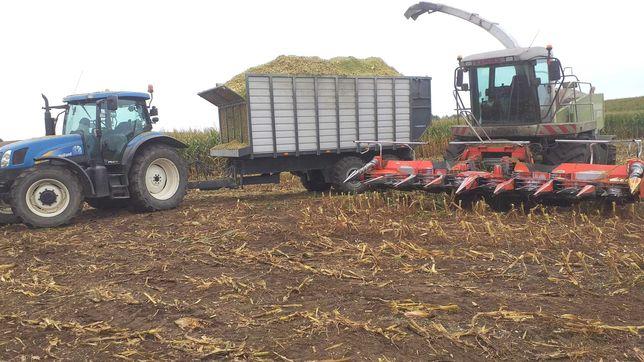 Usługi rolnicze. Koszenie kukurydzy