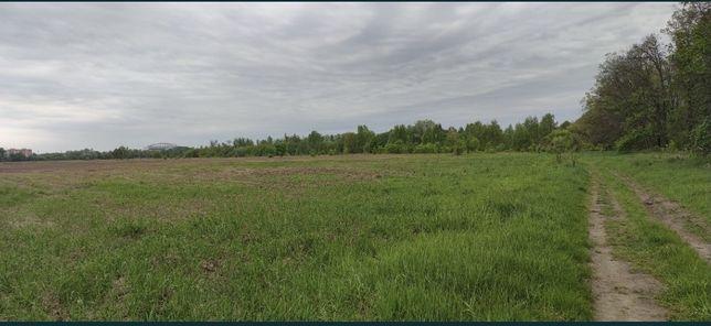Продам 4га земли в Шпитьках , вдоль новой окружной дороги