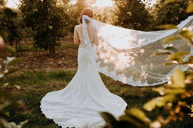 Suknia ślubna Morocco marki Pronovias
