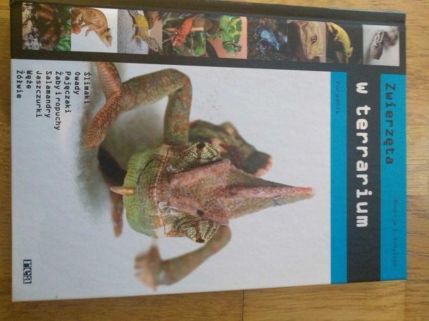 Zwierzęta w terrarium, Poradnik, Beertje I. Schuiten, wydawnictwo Rea