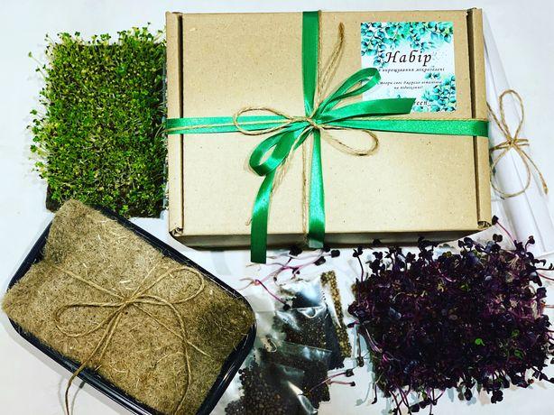 Набір для вирощування мікрозелені вдома