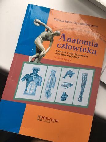 Suder Brużewicz Anatomia człowieka