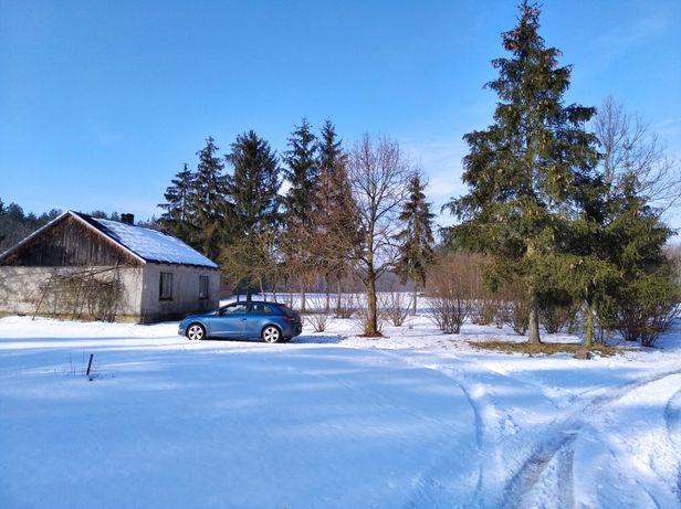 Działka siedlisko dom pośród lasów - cisza spokój