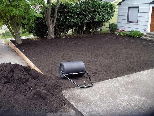 Usługi ogrodnicze zakładanie trawników koszenie sprzątanie trawnik