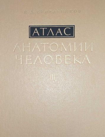 Атлас анатомии человека. Р.Д.Синельников. 1981