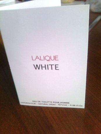 Lalique White туал. вода