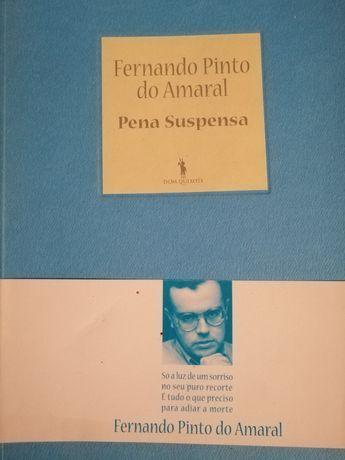 Fernando Pinto do Amaral Pena Suspensa Livro Novo