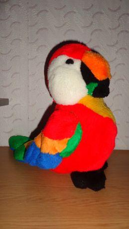 Красивый яркий попугай