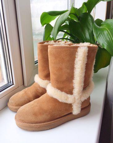 Зимние сапоги (сапожки, ботинки) UGG Carter, 35-36 размер