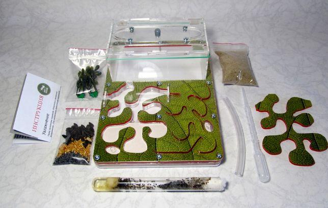 Муравьиная ферма (формикарий) «Anthouse» (лист) полный комплект