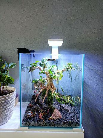 Akwarium Aquael shrimpset