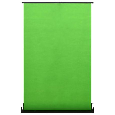"""vidaXL Fundo fotográfico verde 97"""" 4:3 51353"""