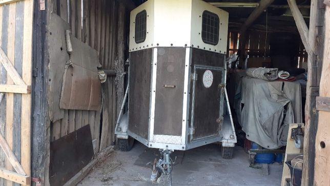 Przyczepa do transportu koni typ Haki holenderska