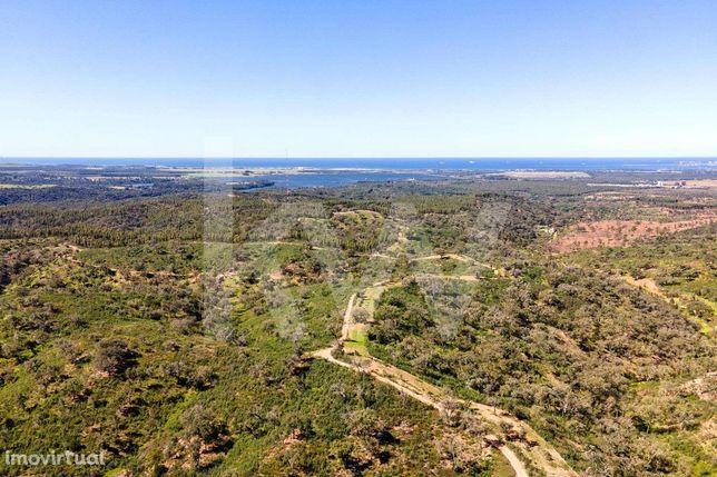 Terreno Rústico na Costa Vicentina com 60 ha, próximo de Porto Covo |