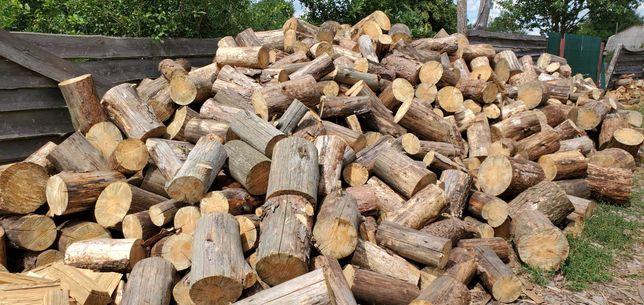 продам дрова Сосна Дуб