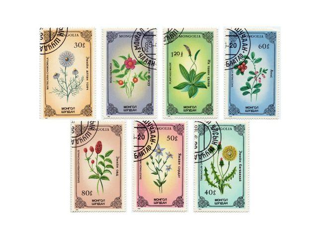 1985-1988г. Монголия. Почтовые марки. Флора.