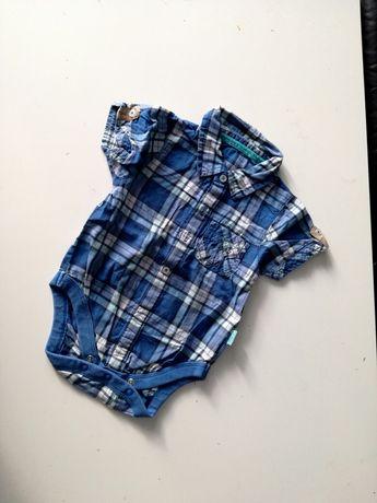 Koszulobody Body koszulowe z kołnierzykiem niebieskie w kratkę r.74
