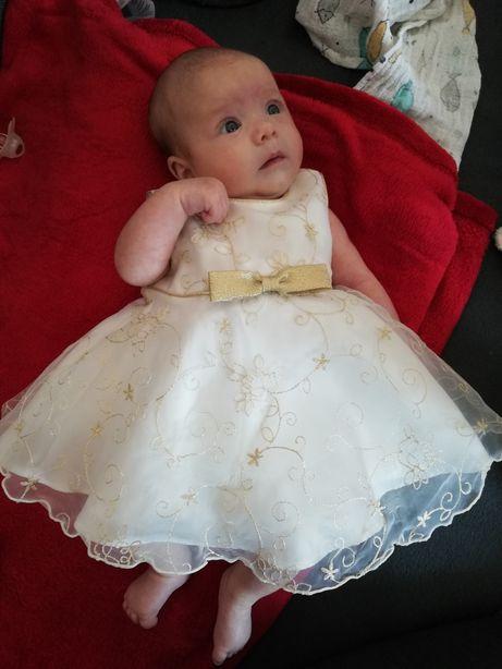 Sukienka na chrzest, wesele, różne okazje