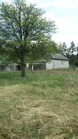 Продаю земельный участок с постройкой (дом, летняя кухня, гараж, сарай