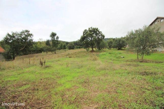 Terreno 1600 Rio Maior Alcobertas