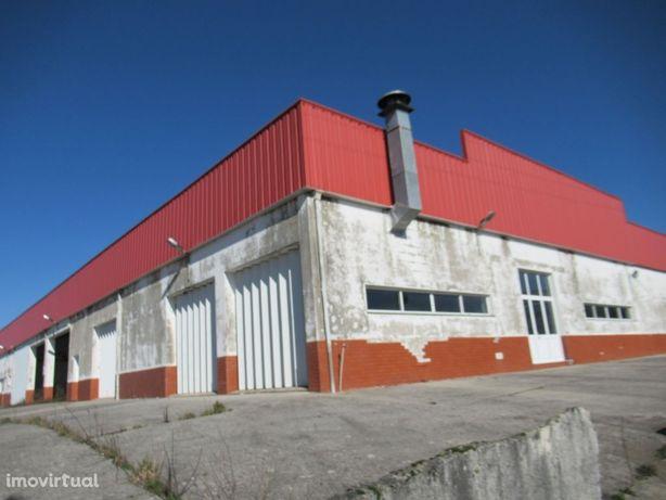 Armazém, 1054m2, Monteiras