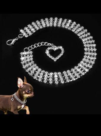 Wyjątkowy naszyjnik obroża dla  Psa kota z cyrkoniami M