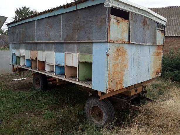 """Пчелопавильон """"Колосок"""", на 20 семей, украинская рамка"""
