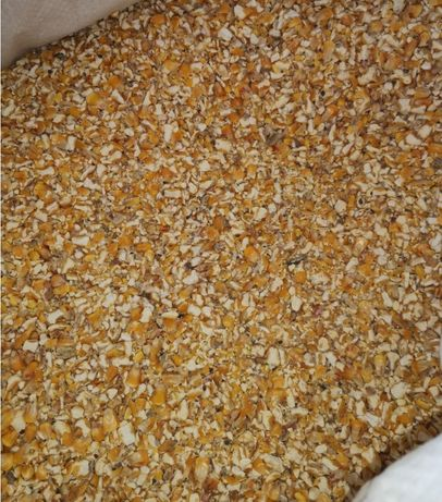 kukurydza grubo mielona *WYSYŁKA