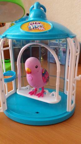 продам интерактивного говорящего попугая.