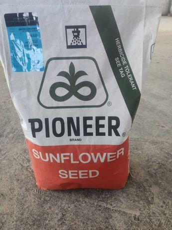 РАСПРОДАЖА семян подсолнуха