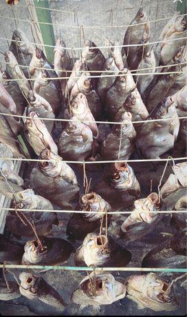 Таранка Сушеная рыба под пиво