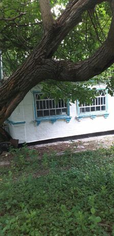 продажа дома, продається будинок, дом, в селі Тарасівка