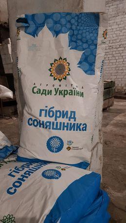 Семена подсолнечника РІМІ-2 под Евролайтинг, насіння соняшника