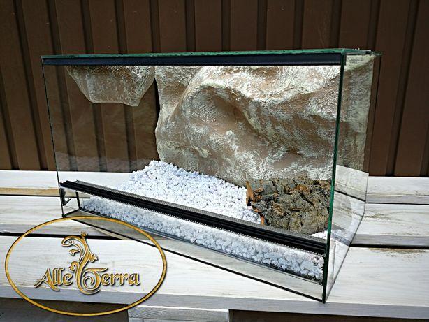 Nowe, szklane terrarium o pustynnym wystroju 50x30x30 cm AlleTerra.